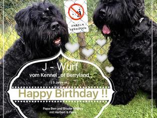 Herzlichen Glückwunsch zum 5. Geburtstag !!