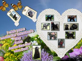 Einen wunderschönen Valentinstag .....!!!