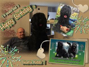 Herzlichen Glückwunsch , Beatrix Kiddo , zu deinem 6. Geburtstag !!