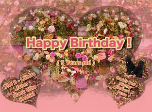 5. Geburtstag , Herzlichen Glückwunsch !