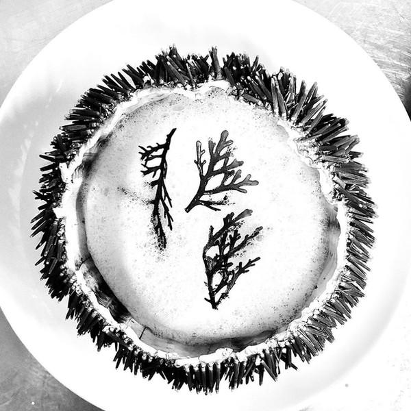 Oursin - Panais - Saké