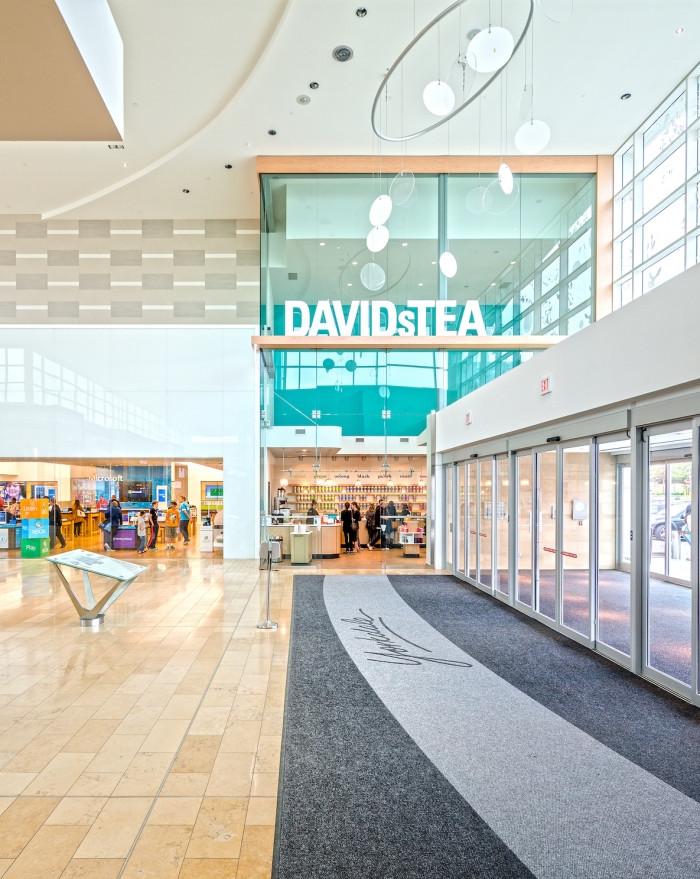 Davids Tea - Image 1.jpg