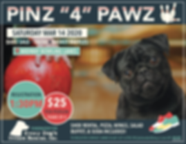 Pins 4 Pawz 2020 Flyer.png