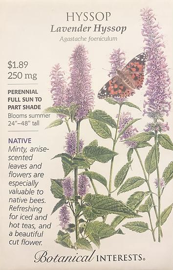 Botanical Interests - Hyssop Lavender Hyssop