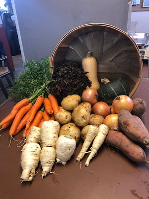 2019 October Fall Box parsnips carrots p