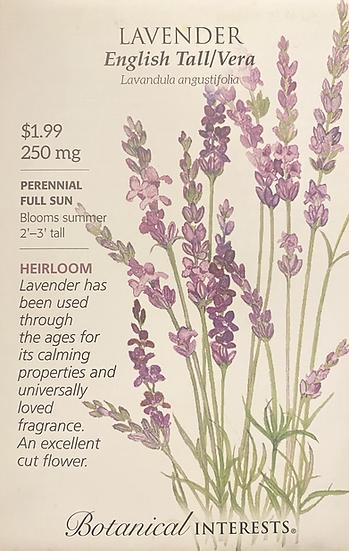 Botanical Interests - Lavender English Tall/Vera