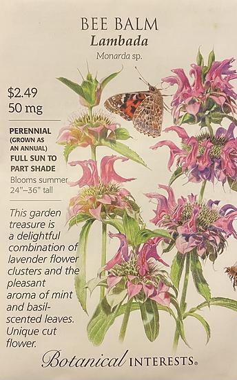 Botanical Interests - Bee Balm Lambada