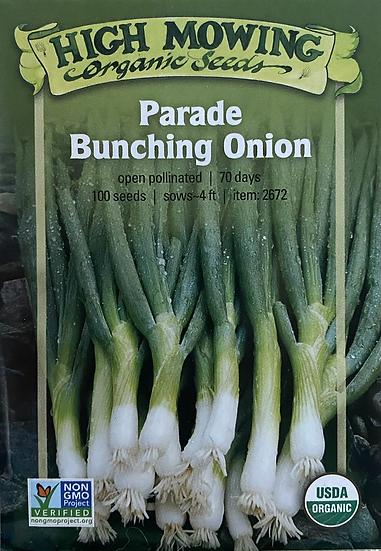 High Mowing Organic Seeds - Parade Bunching Onion