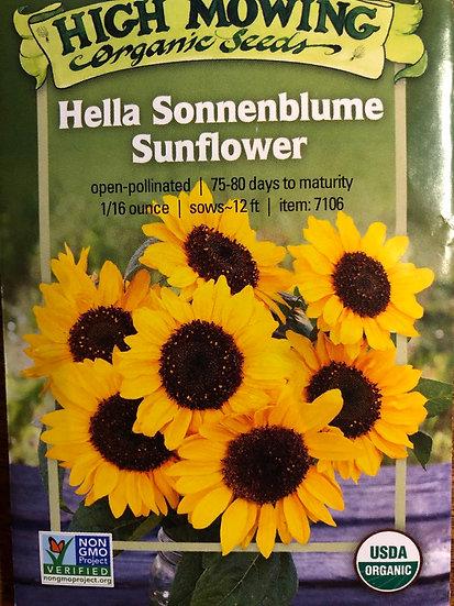 High Mowing Organic Seeds - Hella Sonnenblume Sunflower