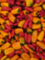 Lunchbox Pepper.jpg