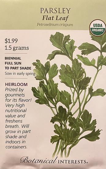 Botanical Interests - Parsley Flat Leaf