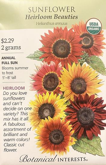 Botanical Interests - Sunflower Heirloom Beauties