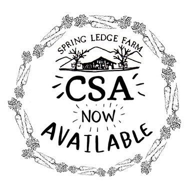 Veg CSA poster.jpg
