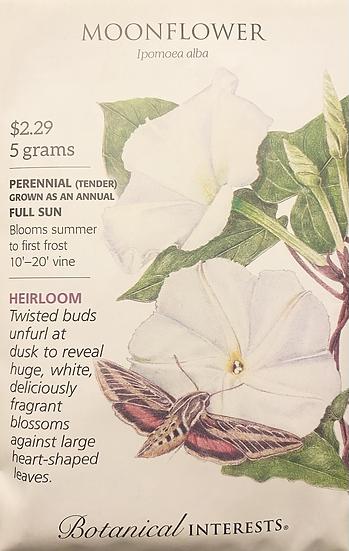 Botanical Interests - Moonflower