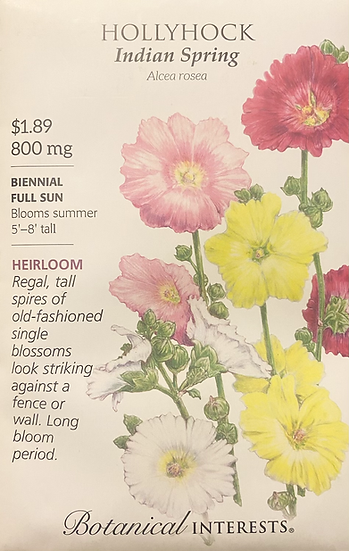 Botanical Interests - Hollyhock Indian Spring