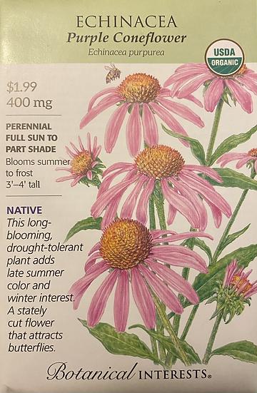 Botanical Interests - Echinacea Purple Coneflower