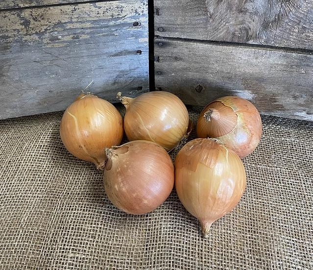 Edgewater Yellow Onions - 2 Pound Bag