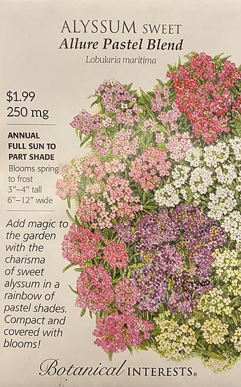Botanical Interests - Alyssum Sweet Allure Pastel Blend