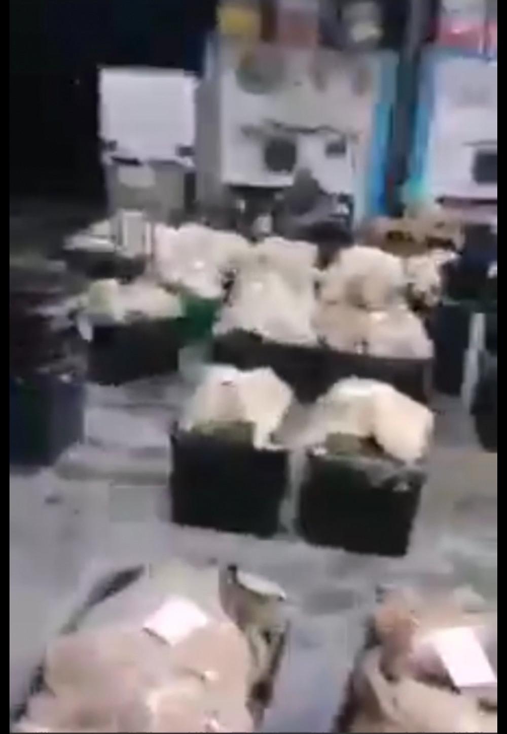 Durian Wholesale centre