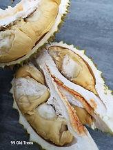 Tekka durian