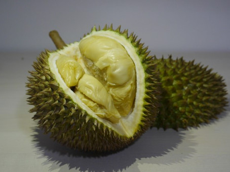 6 Most Popular Durian Cultivars in Singapore