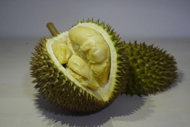 Jin feng durian D198