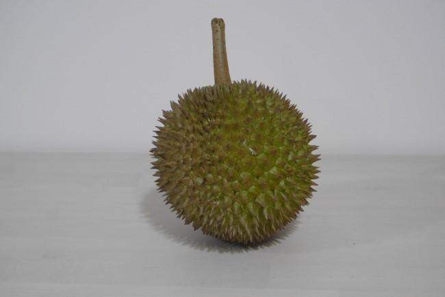 Jin Feng Durian