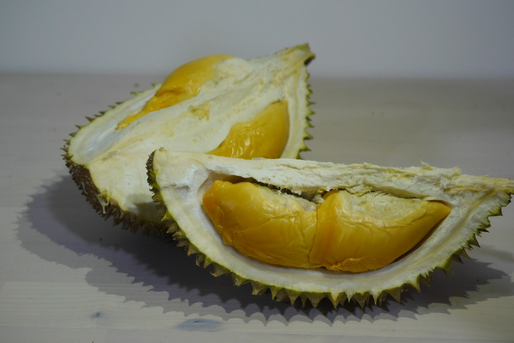 Deep orange flesh D13 durian