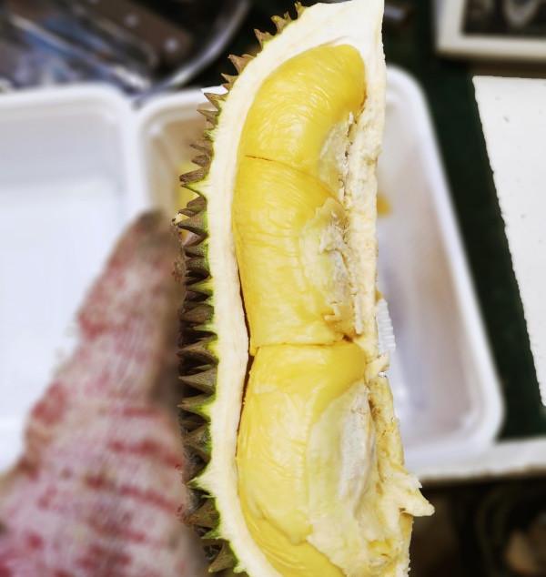 Hor Lor Durian D163