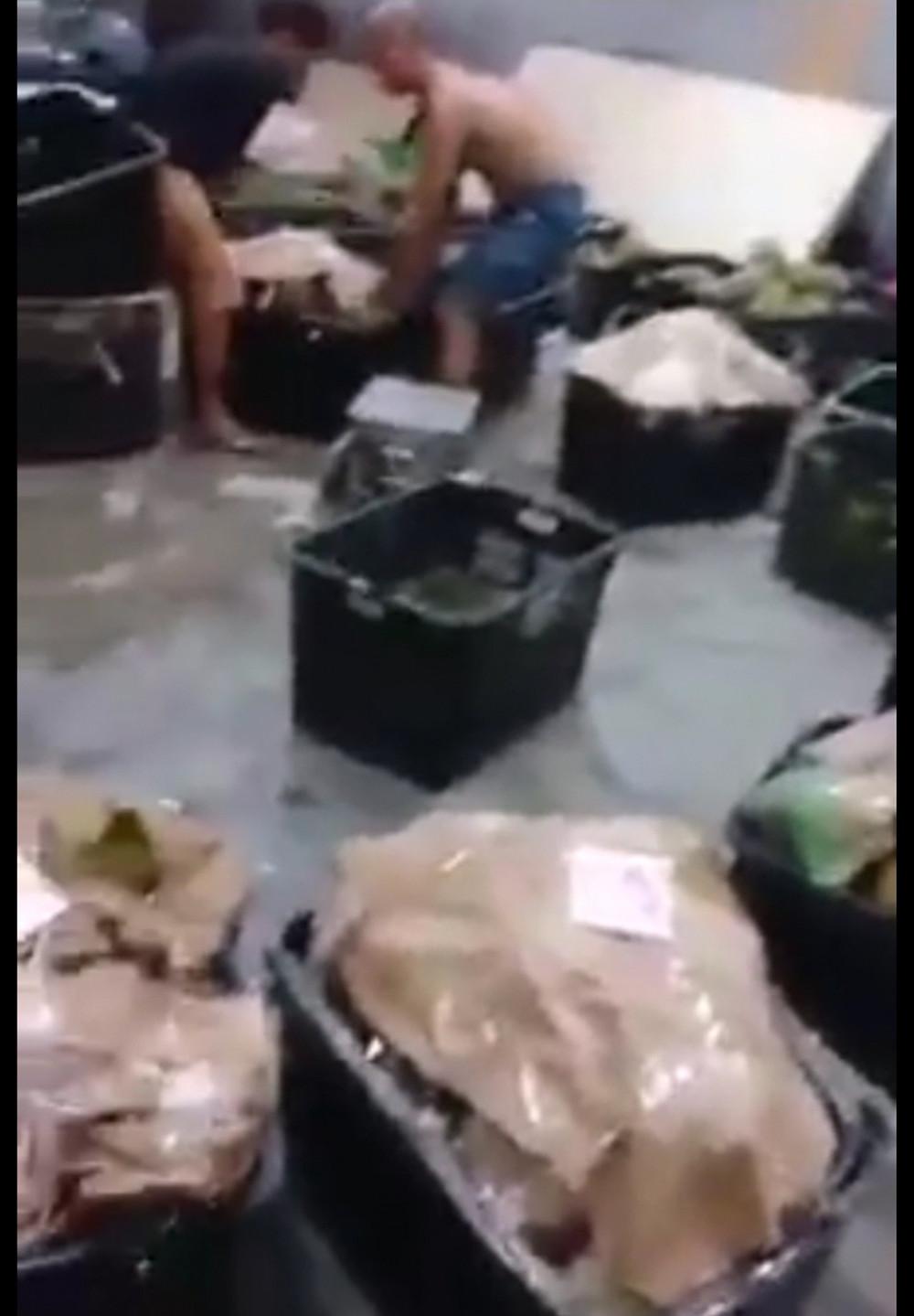 Durian wholesale center