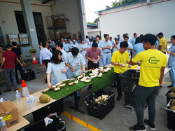 Corporate Durian Party