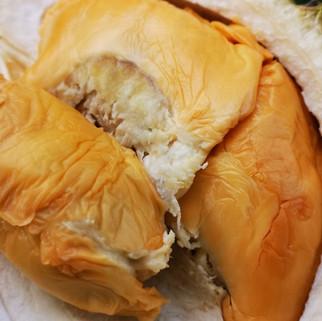 D13 Durian