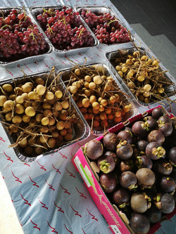 Topical fruits mangosteen