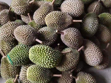 Fake durian news- Why I choose to expose them now? The Coronavirus and impact on durian trade.