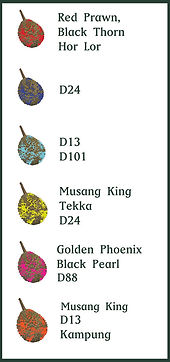 Durian Trail Legend showing different cultivars