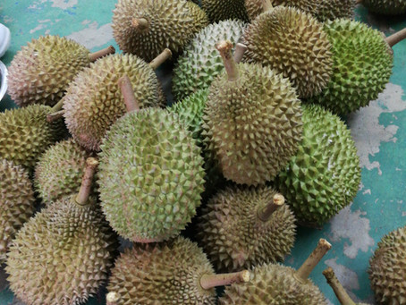 How to choose a good Durian - 5 steps