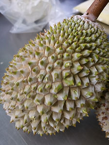 nitrogen blast frozen durian