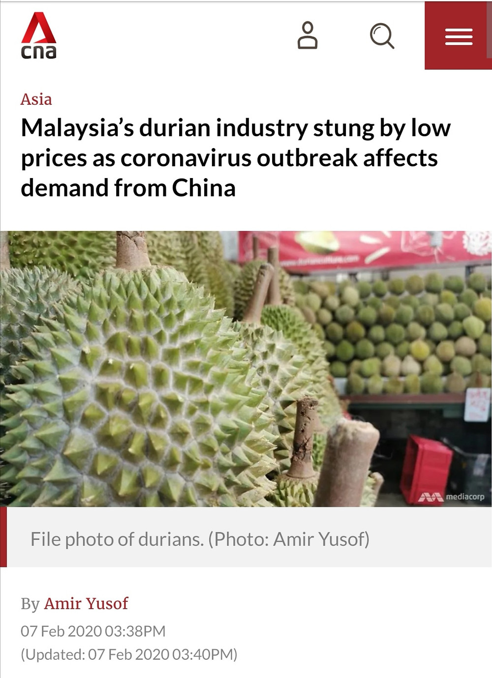 CNA article reporting on durian