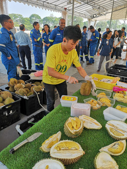 Jurong Island Durian Party