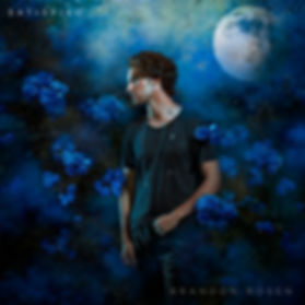 Brandon-Cover-A.jpg