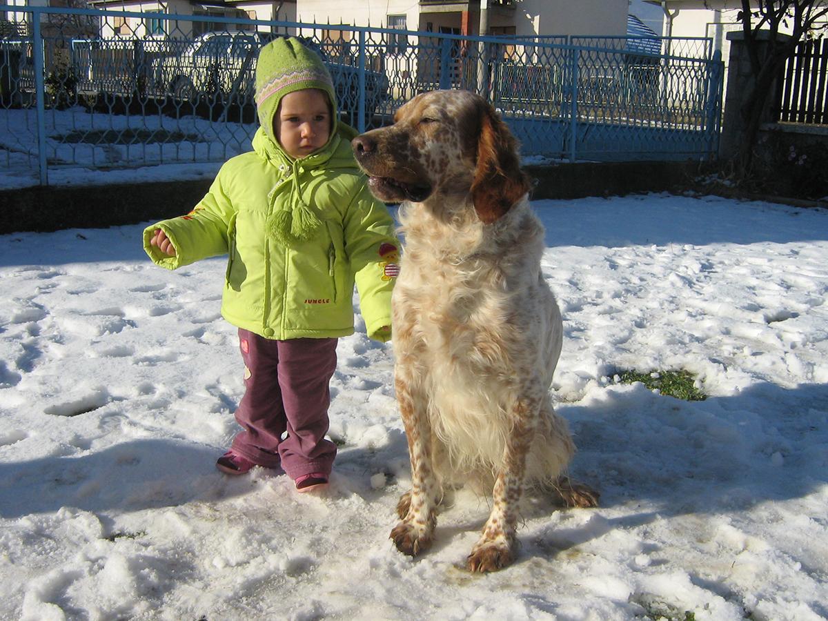Dodavanje psa na slici