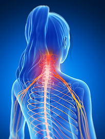 painful-neck-muscles-475699209_3750x5000