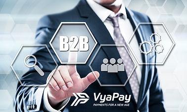 VyaPay Payfac B2B.jpg