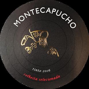 Rotulo Montecapucho Frente.png
