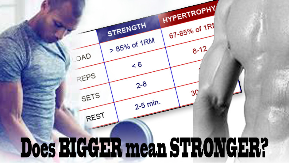 Does BIGGER mean STRONGER?