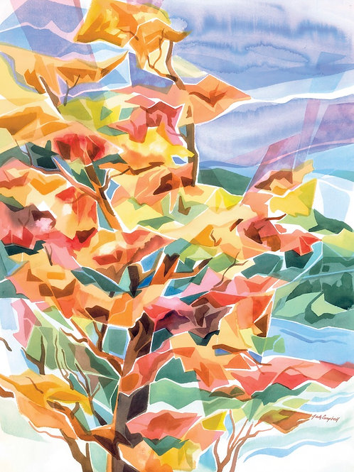 Autumn Splendor 22 X 30 Giclee Print on Canvas
