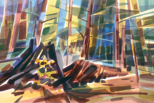 """Stained Glass Forest""  26 X 40 Giclee Print"