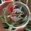 Thumbnail: Zodiac Glass