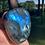 Thumbnail: Labradorite Palm Stones