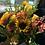 Thumbnail: Fall Florals